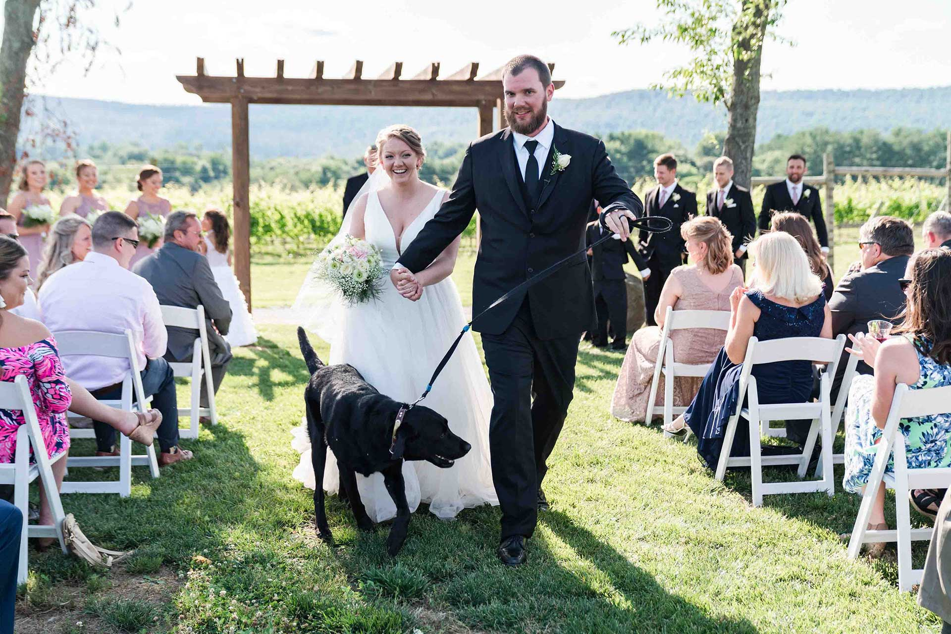 bride and groom walking with dog down the aisle with seated guests